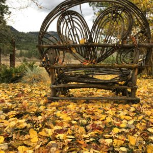 autumn love bench